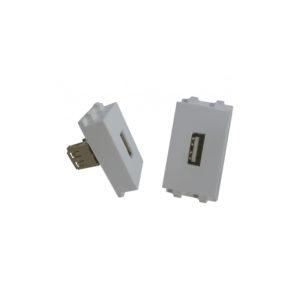 Modulo Face Plate USB